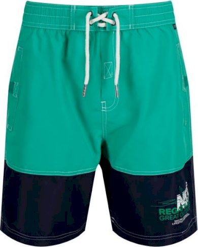 Sportovní plavky/šortky REGATTA  RMM010  Bratchmar III Zelené