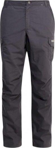 Pánské outdoorové kalhoty Regatta Lined Delph Trs Iron šedé