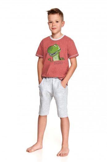 Chlapecké pyžamo 2216 Alan - TARO