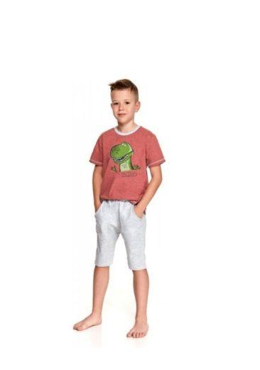 Dětské pyžamo Taro Alan 2215 104 Cihlová