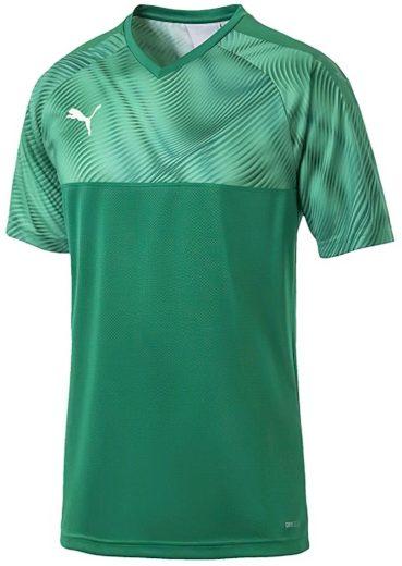 Pánský fotbalový dres Puma Cup Jersey
